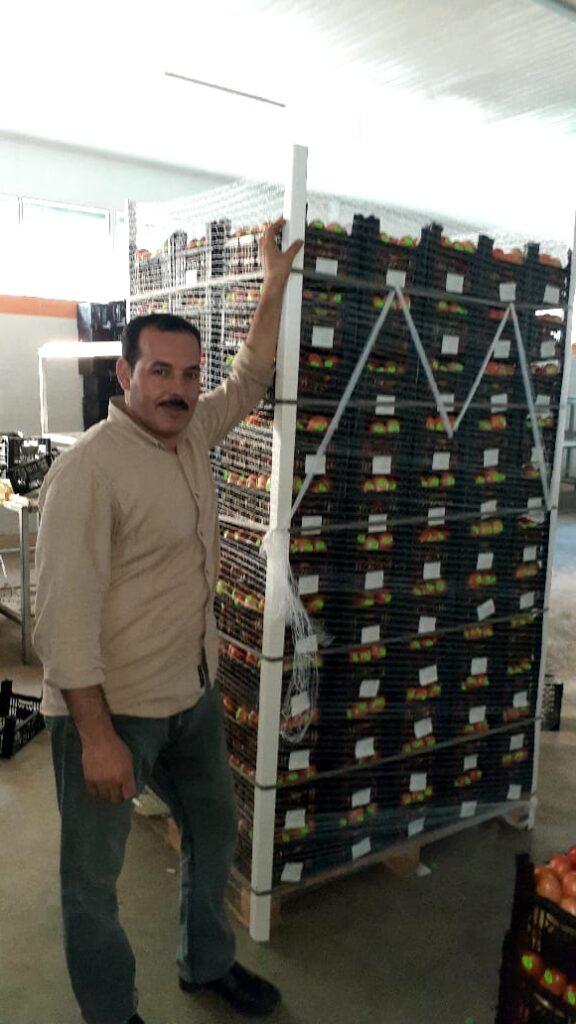شعبان عامر العامر للتصدير فرز وتعبئة وتبريد وتجميد الخضروات والفاكهة