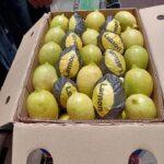 ليمون / Lemon