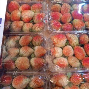 فـــراوله / Strawberry