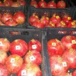رمــان / Pomegranate